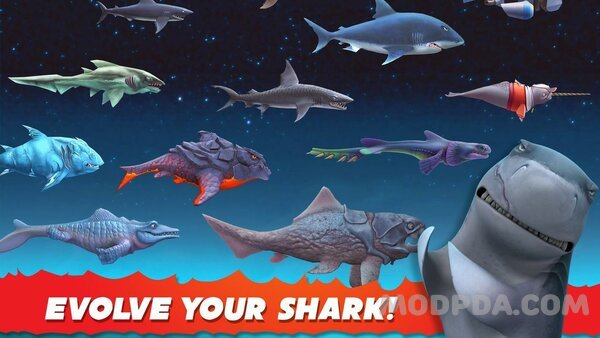 Download Hungry Shark Evolution HACK/MOD Money for Android